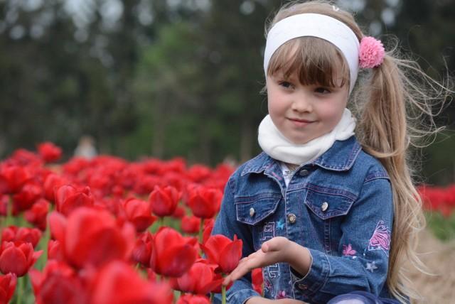 Międzynarodowe Targi Tulipanów w Chrzypsku Wielkim 2019