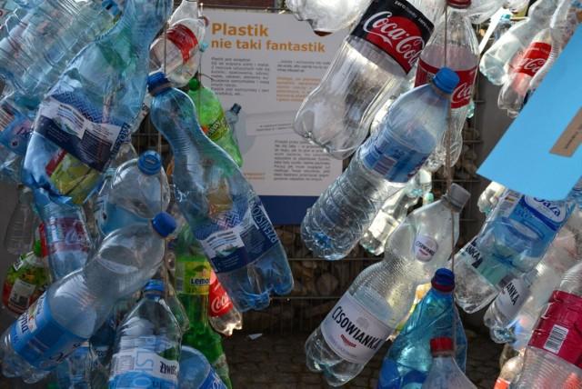 W Bytomiu odbędzie się Otwarta Konferencja Ekologiczna. Przygotowano mnóstwo atrakcji