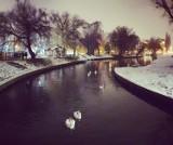 Zima w Pruszczu okiem naszych Czytelników. Zobaczcie te klimatyczne, zimowe zdjęcia naszego miasta ze spaceru, z balkonu  |Galeria