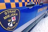 Tydzień z życia Straży Miejskiej w Świdnicy: na giełdzie staroci bez maseczki i problemy z pijanymi