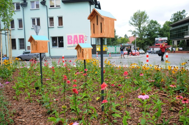 Nowy park w Krakowie. Ogród Motyli na rogu Dekerta