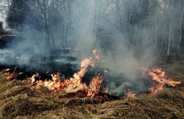 W tym roku strażacy już od początku marca mają pełne ręce roboty przy gaszeniu palących się traw i nieużytków