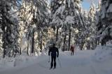 Narciarskie trasy biegowe w Bielicach otwarte