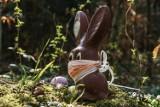 Wielkanoc 2021 - obostrzenia na najbliższe święta. Tak może wyglądać Wielkanoc 2021