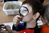 Morskie warsztaty naukowe dla dzieci we Władysławowie. Ferie to doskonały czas, by odkrywać świat poprzez zabawę [zdjęcia]