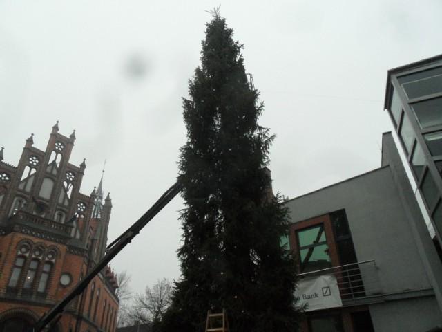 Święta w Chorzowie: wielka choinka stanęła przy poczcie