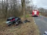 Złota. Wypadek w Złotej, samochód osobowy uderzył w drzewo, jedna osoba została ranna [ZDJĘCIA] (24.11.2020)