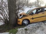 Wypadek na drodze Michałowo - Żednia. Peugeot uderzył w drzewo. Ranna kobieta trafiła do szpitala [ZDJĘCIA]