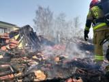 Pożar w Czempiniu. Rodzina straciła dach nad głową. Już organizowana jest pomoc dla mieszkańców domu zniszczonego w pożarze [ZDJĘCIA]