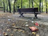 Park miejski w Olkuszu na celowniku wandali. Popisane ławki, porozrzucane śmieci i zniszczona altana [ZDJĘCIA]