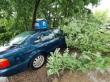 Burze w Toruniu i regionie. W mieści powalone drzewa, zalany parking i piwnice. Zobacz zdjęcia!