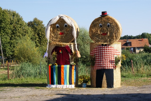 Już w najbliższą sobotę, 17 sierpnia, gmina Szczaniec zaprasza na coroczne obchody święta plonów, które w południe rozpocznie polowa msza dożynkowa. Gości przywitają zespoły śpiewacze a po części oficjalnej rozpocznie się turniej wsi. Dożynkom towarzyszyć będą liczne stoiska, na których będzie można spróbować lokalnych przysmaków, porozmawiać z gospodarzami. Początek w południe w Parku Świętojańskim w Szczańcu.