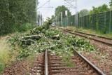 Burze w Opolskim. Blisko 50 interwencji strażaków. Wichura przewróciła drzewa na tory w Lewinie Brzeskim