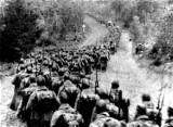 To szare mrowie Armii Czerwonej, obojętne, dzikie, prymitywne. Rocznica ataku sowieckiego na nasz kraj