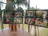 Fotografia - Moja pasja - wystawa w Palmiarni [ZDJĘCIA]