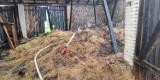W Warlubiu paliła się stodoła. To prawdopodobnie podpalenie