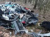 Dotkliwa kara dla gnieźnianina, który zaśmiecał las