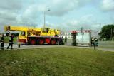 Inowrocław. Wypadek ciężarówki z bydłem i trzodą chlewną [ZDJĘCIA]