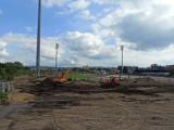 Stadion Sandecji coraz bardziej zielony. Nowa murawa już przy Kilińskiego [ZDJĘCIA]