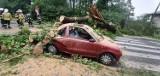 Chrzanów. Uszkodzone dachy, powalone drzewa i zniszczone samochody. 115 interwencji straży to bilans burzy [ZDJĘCIA]  AKTUALIZACJA
