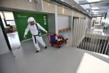 Kiedy skończy się epidemia koronawirusa? Naukowcy z Wrocławia to wyliczą