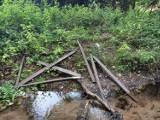 Chuligani zdewastowali leśną ścieżkę dydaktyczną. Wygląda jak po przejściu tornada!
