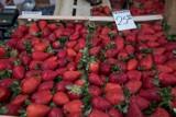 Brakuje rąk do pracy w rolnictwie. Ukraińcy nie zdążą dotrzeć do Polski? Wszystko przez koronawirusa