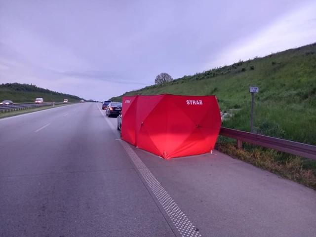 35-letni pasażer skody zginął w nocnym wypadku na autostradzie A1 (na 300 km między węzłami Łódź Północ a Brzeziny). Na nitce drogi prowadzącej w kierunku Katowic, na wysokości miejscowości Głogowiec, samochód zderzył się z...łosiem!  ZOBACZ ZDJĘCIA - KLIKNIJ DALEJ