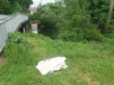 - Proszę osobę, która to wyrzuciła to nad rzeką o posprzątanie – napisał pewien działkowiec. My wiemy, że do dwóch nastolatków