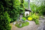 Zabrze: Odwiedzający wracają do ogrodu botanicznego. Piękne miejsce na spacer