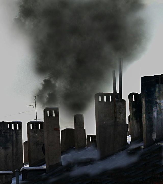 Smog powstaje m.in. wtedy, gdy do domowych pieców wrzucane są lakierowane płyty drewniane