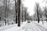 W Dzień Śniegowego Płatka sypnie śniegiem