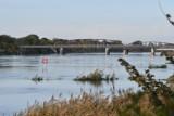 Odra w Kostrzynie wysoka, ale jeszcze niegroźna. Stan rzeki od kilku dni wzrasta. Czy jest się czego bać?