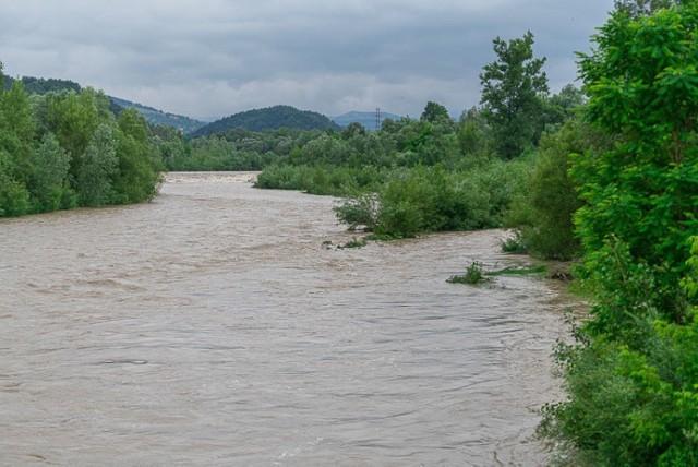 Rzeka Kamienica w normie