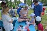 Piknik z okazji Dnia Dziecka w ramach trzecich Kieleckich Dni Energii. Na małych i dużych czekała moc atrakcji [ZDJĘCIA]