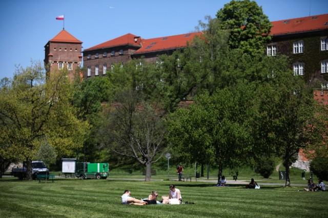 W tym roku można będzie spędzić Dzień Dziecka na Wawelu - na zamku pojawi się znana bohaterka książek dla dzieci - Basia i jej miś Zdzisiek