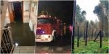 Silne burze zebrały żniwo w powiecie oleśnickim. Strażacy do tej pory walczą z jej skutkami. Ile było interwencji? (13.7)