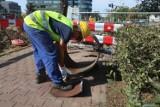 Skargi do inspekcji pracy w Bydgoszczy płyną na potęgę. Czego najczęściej dotyczą?