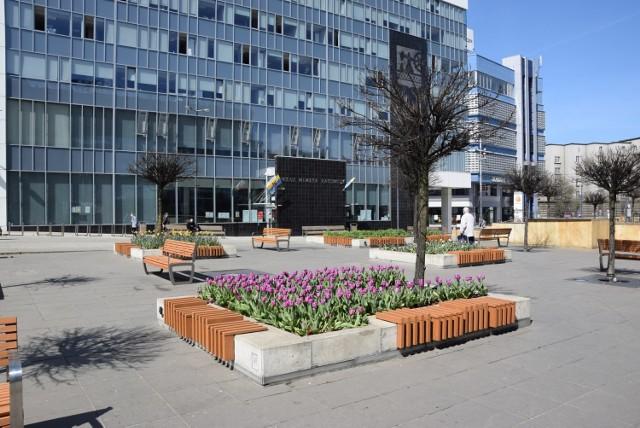 Kwiaty na rynku w Katowicach
