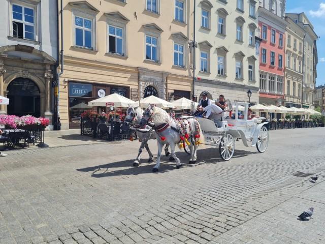 Dorożka przejeżdżająca przez Rynek Główny w środe 28 lipca