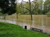 Aktualizacja. Stany alarmowe na Sole i Wiśle, choć woda w rzekach powoli opada, ale i tak jej poziom jest bardzo wysoki [ZDJĘCIA]