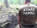 Nieodpowiedzialni turyści wzniecili pożar w Karkonoskim Parku Narodowym [ZDJĘCIA]