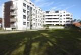 Rząd dopłaci do wynajmowanych mieszkań. Dopłata mieszkaniowa w maksymalnej wysokości 1500 zł na pół roku. Kto będzie mógł skorzystać?