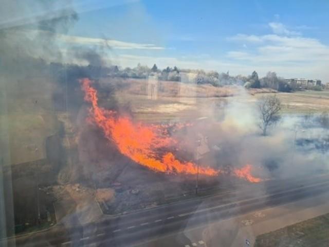 Kraków. Pożar traw w rejonie Bonarki