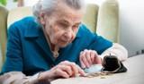 Najbardziej zadłużony senior w kraju mieszka w województwie łódzkim. Jakie długi mają seniorzy z województwa i innych regionów? RANKING