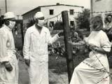 Tak Wrocław walczył z epidemią latem 1963 roku. Zobacz! (ZDJĘCIA)