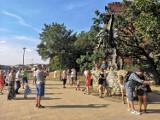 Kraków w obiektywie Google Street View. Co i kogo uchwyciły kamery Google? Sprawdź, być może jesteś na tych zdjęciach! [ZDJECIA]