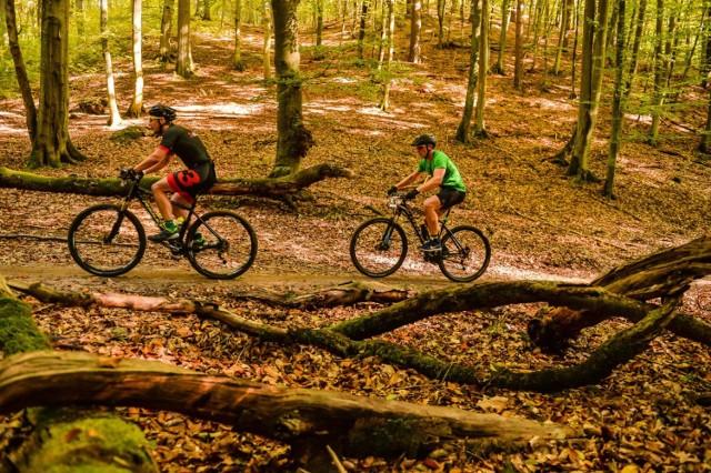 Mazowiecki Park Krajobrazowy liczy aż 23 tysiące ha. Swoim zasięgiem obejmuje dzielnicę: Wawer i Wesołą oraz gminy: Józefów, Otwock, Wiązownę, Karczew, Celestynów, Kołbiel, Osieck, Sobienie, Jeziory oraz Pilawa. Teren parku zdecydowanie sprzyja rowerom. Powstały tutaj szlaki, również dla rowerów MTB. Zachwyca także przyroda. Są tutaj bagna torfowiska i jeziora, przy których znajdują się miejsca na ognisko. A zimą warto wybrać się na trasę biegową, która uważna jest za najlepszy szlak dla narciarzy. Łańcuch wysokich wydm ciągnie się z Międzylesia aż do Józefowa.  DOJAZD: