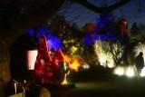 Ogród Botaniczny jak z bajki! Zobaczcie magiczne zdjęcia!