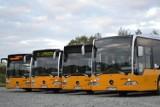 Rozkład jazdy Śrem: zmiany w połączeniach komunikacji miejskiej w Śremie. Dodatkowe kursy autobusów już od 1 września